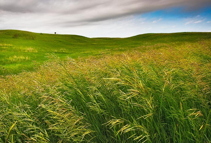 North Dakota Prairie  Hills